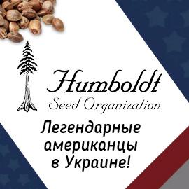Купить семена конопли